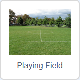 ../_images/scratch3-fondo-playingfield.png